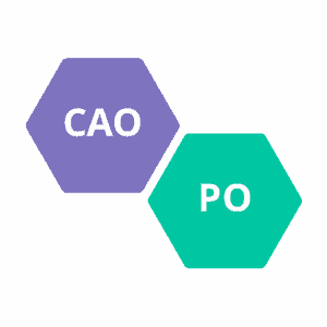 Deskundigheidsbevordering CAO PO